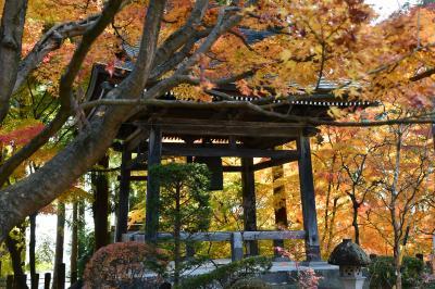今年も綺麗なグラデーションカラー人気名刹「昌禅寺」