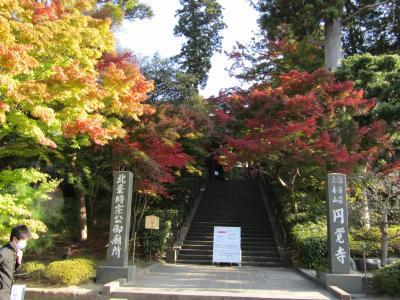 北鎌倉・円覚寺総門前の紅葉-2020年秋