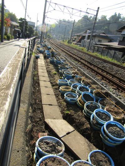 北鎌倉・線路沿い道路下の側溝の泥さらい
