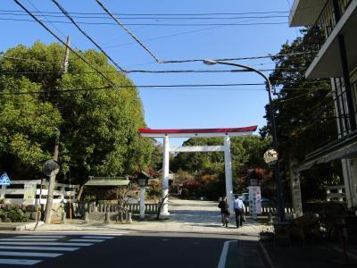 鎌倉宮-2020年秋