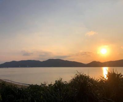 奄美大島伝泊の旅