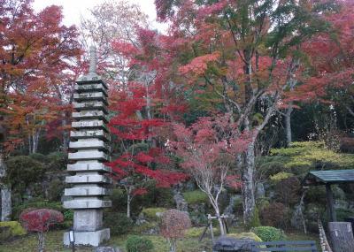 紅葉の箱根(ポーラ美術館・長安寺)へ