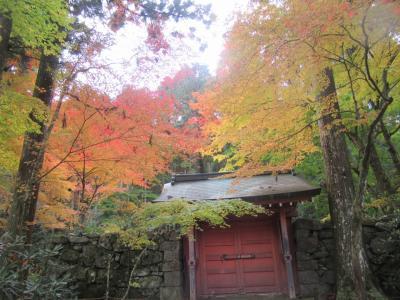 紅葉の名所 永観堂と東福寺通天橋で癒され、世界遺産の平等院鳳凰堂と宇治上神社で、パワーをいただいた旅!