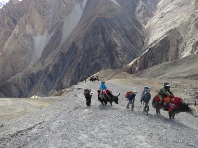 ヤク漬けのパキスタン その3 シャチミルコ峠の真実
