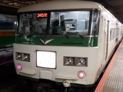 M DEC 2020  プチテツⅡ・・・・・②185系ホームライナー小田原号惜別乗車