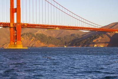 サンフランシスコへ食い倒れの旅2020年秋 後編
