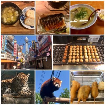1年振りに西へ!大阪2泊②食べまくり編 丑寅~くれおーる~金龍ラーメン~新世界~天王寺動物園~串カツだるま