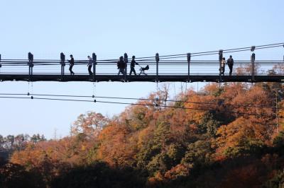 iPadが渓谷に落下でパニック!!!~忘れられない、秋の木次&奥出雲ドライブ~