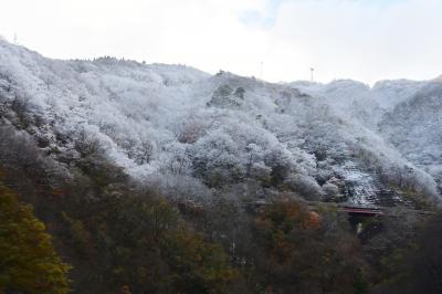 秋田~仙台・こまち車窓から