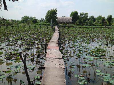 ホーチミン Tam Da Dam Sen