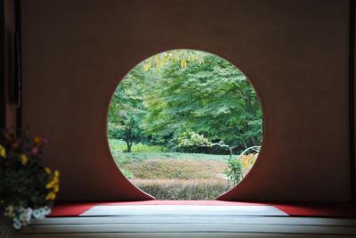 県内旅行で北鎌倉から観音崎、浦賀、城ヶ島へと三浦半島をぐるり。②北鎌倉 明月院へ。