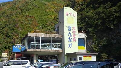 四万十川遊覧と、新足摺海洋館(SATOUMI)の見学等 初日03。大歩危峡まで。