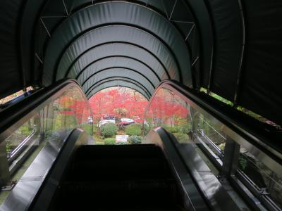 ◎箱根・秋