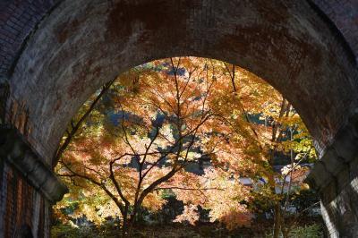 20201118-2 京都 永観堂まで来たのなら、南禅寺にも