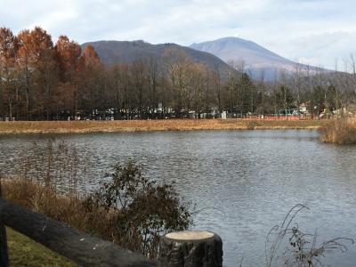 晩秋の景色を見たくて軽井沢に来ました!