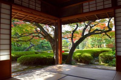 福岡市の庭園 松風園