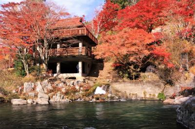 錦繍の紅葉を追いかけて♪ 大井平公園の紅葉♪