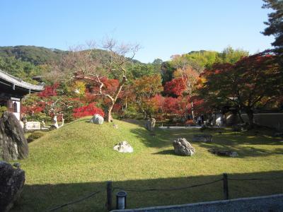 京都・秋の高台寺など祇園界隈散策