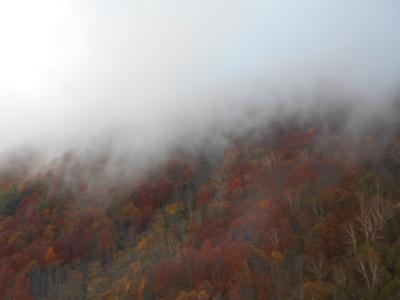 絵葉書の様な紅葉と雪山を一度に味わう信州  感動旅3ソラテラス絶景と松川渓谷裏見の滝と小布施を訪ねる