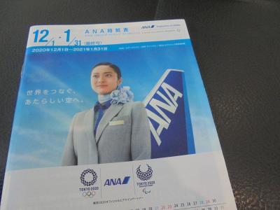 秋の広島路-2 白島ー横川ー白市  広島空港→羽田空港 ANA684