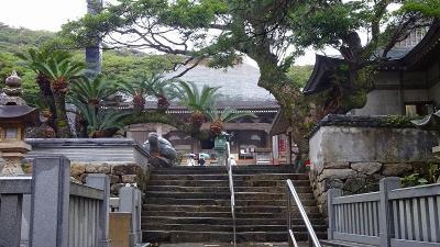 四万十川遊覧と、新足摺海洋館(SATOUMI)の見学等 翌日03。足摺岬から新足摺海洋館水族館SATOUMIへ。