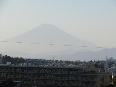 舞岡公園西尾根道から見えた富士山-2020年秋