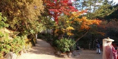 秋の広島、宮島 紅葉とグルメ