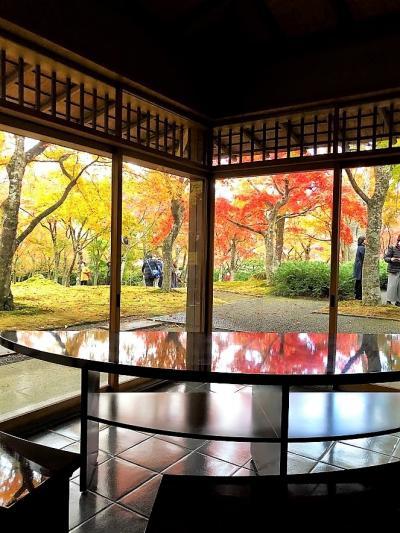 箱根の紅葉と温泉と 箱根美術館 山のホテル 長安寺 ハーベストクラブ箱根翡翠
