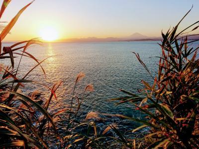 江ノ島サンセットとクラリタ ダ マリッティマで美味しいイタリアンランチ