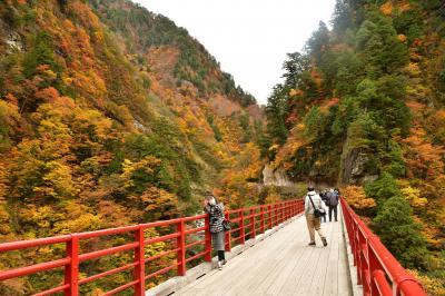 ☆★☆ 黒 部 峡 谷 ☆★☆  トロッコ電車で行く   欅平周辺散策