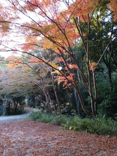 伊賀の旅①忍者★NIPPONIA HOTEL 伊賀上野に泊まる