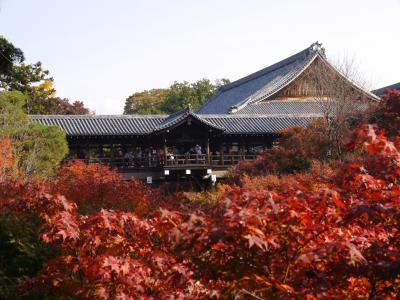 恐る恐るの旅行、第二弾は・・京都へ 2泊3日