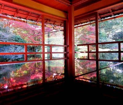 団塊夫婦の2020年日本紅葉巡りドライブー(滋賀5) 石山寺から日吉大社&旧竹林院へ