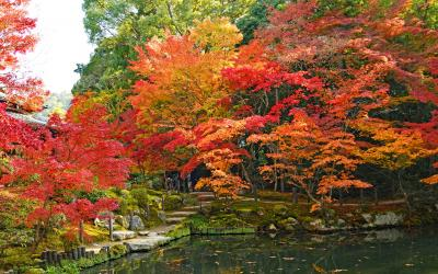 錦秋の京都: 南禅寺・天授庵、永観堂、神護寺、二尊院など紅葉見頃の7寺院を巡った日帰り旅