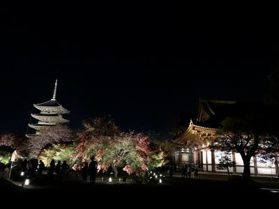 東寺2020秋期特別公開~紅葉ライトアップ
