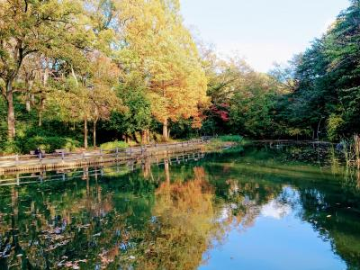 秋の横浜市児童遊園地とこども植物園