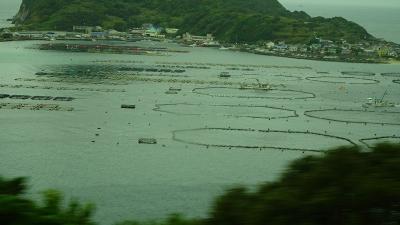 四万十川遊覧と、新足摺海洋館(SATOUMI)の見学等 翌日08。透明度抜群の柏島の下車観光 下巻。