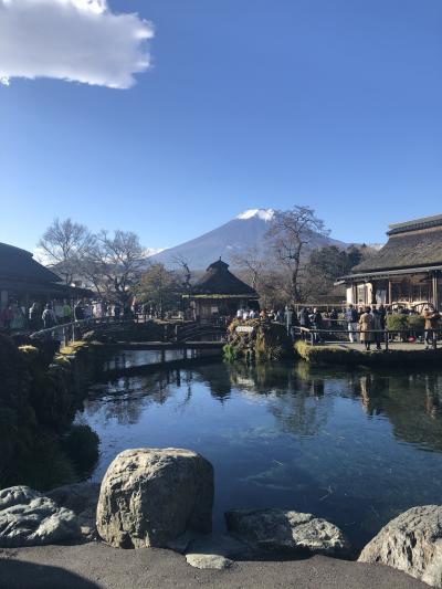 Goto忍野八海と身延山②