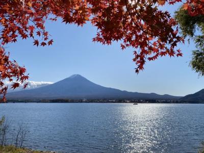 【GOTO利用】HIS日帰りバスツアー!日本三大奇橋「甲斐の猿橋」と「河口湖」で紅葉鑑賞&ぶどう狩り