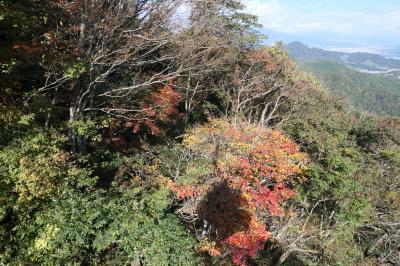 秋の伊豆旅♪ Vol.10 ☆伊豆の国パノラマパーク:ロープウェイに乗って錦色の風景を眺めて♪