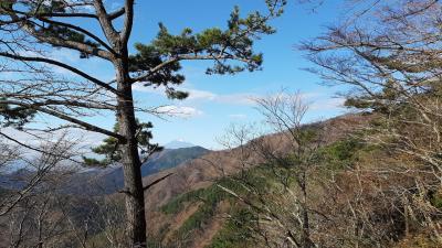 2度目の丹沢山系は丹沢山頂上へトレッキング