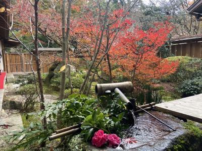 京都洛北(大原)でぶらり紅葉めぐり−宝泉院、勝林院、三千院、寂光院−