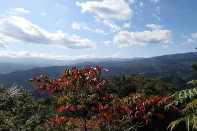 秋の伊豆旅♪ Vol.13 ☆伊豆の国パノラマパーク:美しい秋の風景♪