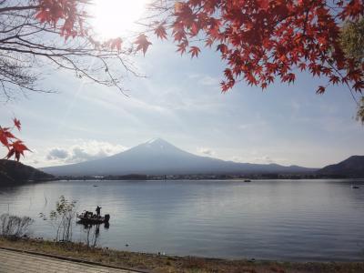 2020.11.富士五湖絶景周遊バスツアー