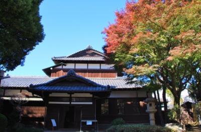 旧朝倉家住宅、菅刈公園などの紅葉巡り 2020年11月