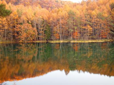 日本って凄い!「秋色と雪の立山黒部アルペンルート&黒部峡谷」 【1日目】