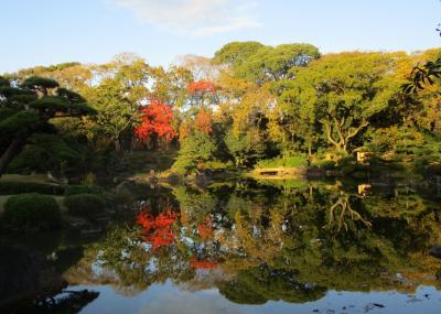 大阪市内の紅葉を探しに気ままにぶらり旅