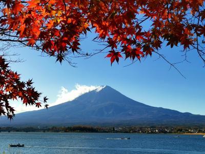 富士山マラソン2020 ハーフラン@河口湖一周+α