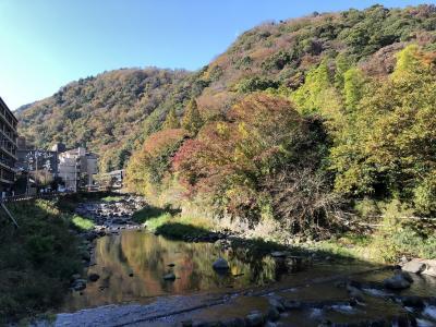 まだまだ、紅葉になり始めの箱根湯本