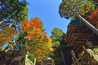 2020紅葉 美濃の正倉院・両界山横蔵寺の紅葉(4)